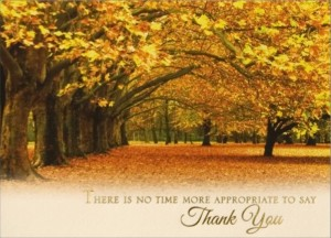 cardsdirect thanksgiving greeting cards