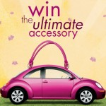 fashion bug ultimate accessory sweepstakes win a car