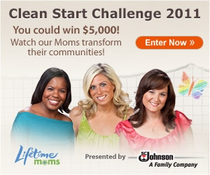 lifetime moms scj clean start challenge