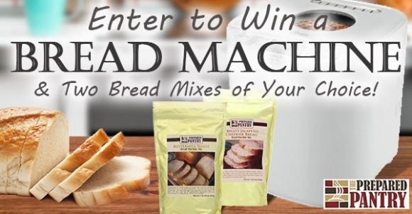 The Prepared Pantry Oster Bread Machine Giveaway