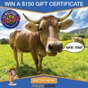 Wellness Meats $150 Gift Certificate Giveaway 3/21/16 1PP18+