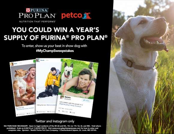The Purina Pro Plan Petco #EverydayChampSweepstakes Sweepstakes