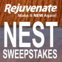 Rejuvenate Nest Learning Thermostat Sweepstakes 9/15/16 1PP18+