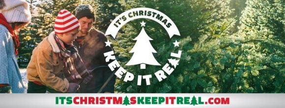 Win a Christmas Tree for Life $5,000 Giveaway