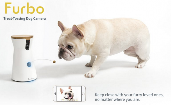 12 Days of Furbo Ultimate Pet Camera Giveaway