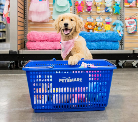 Puppy's First Visit to PetSmart Sweepstakes