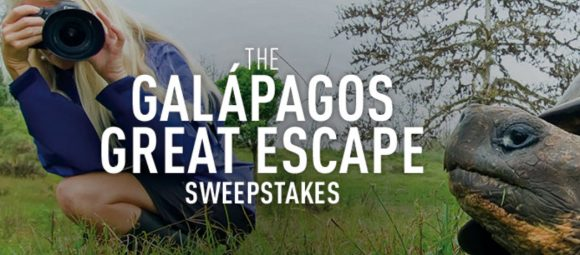 Sweeties Sweeps has your Jeopardy Galapagos Great Escape Sweepstakes Daily Code Words. Enter now for your chance to win a daily trip for two to the Galapagos Islands.