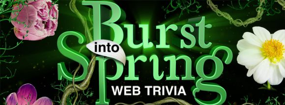 LIVE's Burst Into Spring Trivia Web Edition Sweepstakes Daily Answers