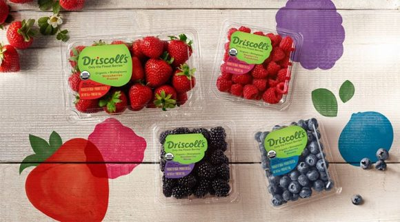 Enter to berries for one whole year in Driscoll's Spring Into Joy Sweepstakes. It's 365 days of the finest berries and 365 ways to share the berry joy. Three winners will be selected=