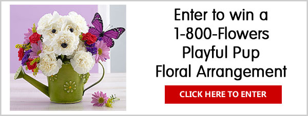 Post a Mother's Day themed photo or video of your dog for your chance to win 1-800-Flowers Playful Pup floral arrangement and Amazing Mom bouquet