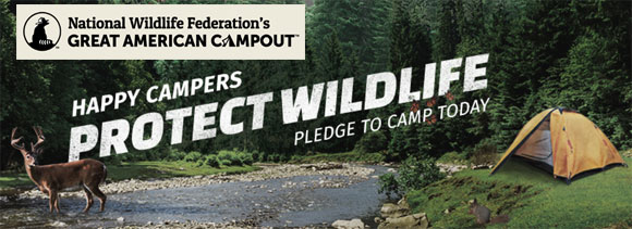 Take the National Wildlife Federation's campout pledge to be entered to win a Bullet Colt RV worth over $18,000