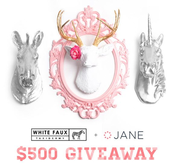 Jane.com White Faux Taxidermy Giveaway