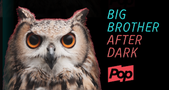 Watch Big Brother After Dark on Pop TV for your chance to win a trip for two toLos Angeles, California to attend thefinale taping of the CBS Big Brother