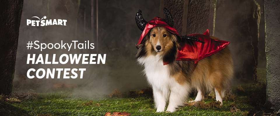 Petsmart Halloween Photo Contest: Enter for the chance to win a selection of spooky toys AND year-supply of pet food! Four lucky runner ups will also receive $100 gift card to PetSmart.