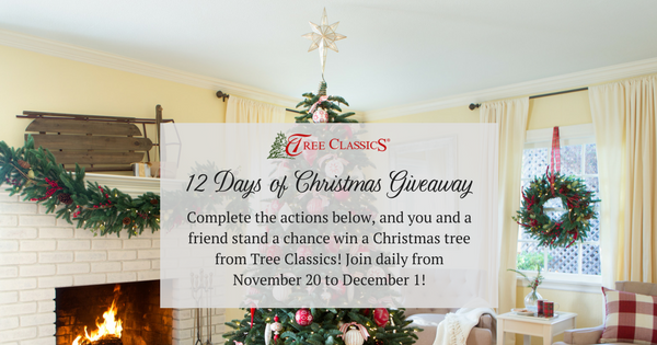 Enter to win 1 of 12 Christmas Trees from Tree Classics http://t.co/X9otM5vuZP