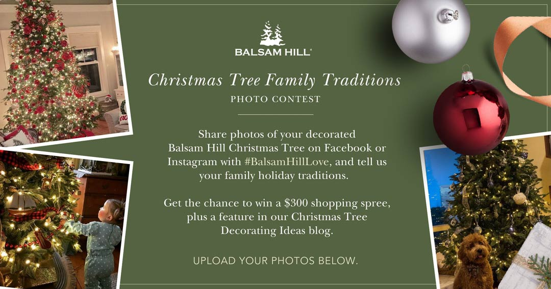 QUICK ENDING! Balsam Hill Christmas Tree Family Traditions Photo ...