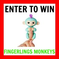 Enter to win the Sold-Out Hot Holiday Toy: Fingerlings Baby Monkey