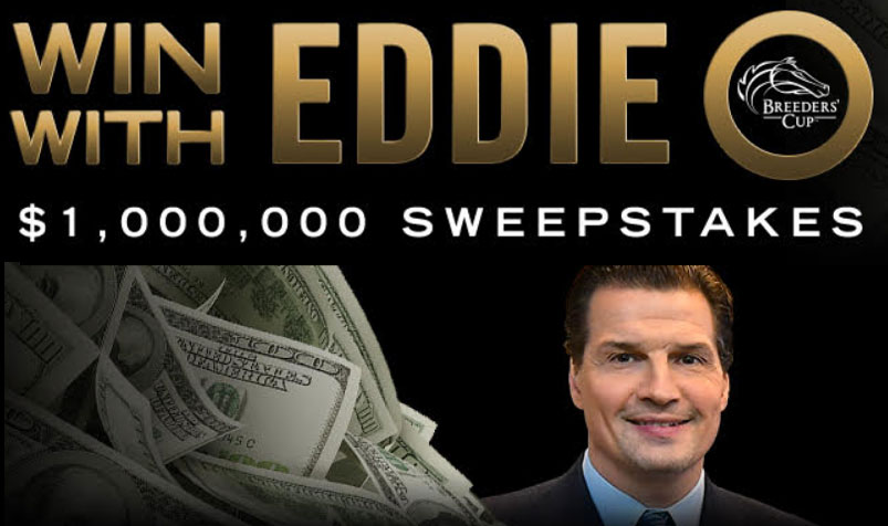 Breeders Cup Win One Million Dollars With Eddie O