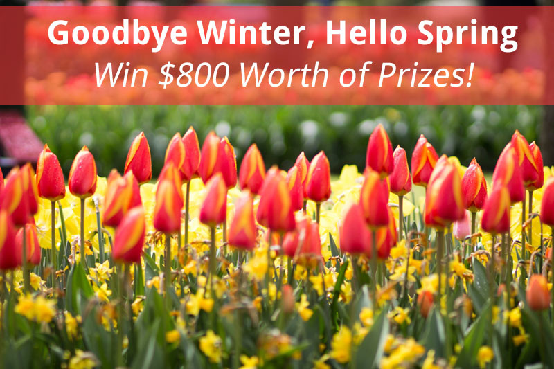 Goodbye winter hello spring 800 giveaway for Ciao youtube