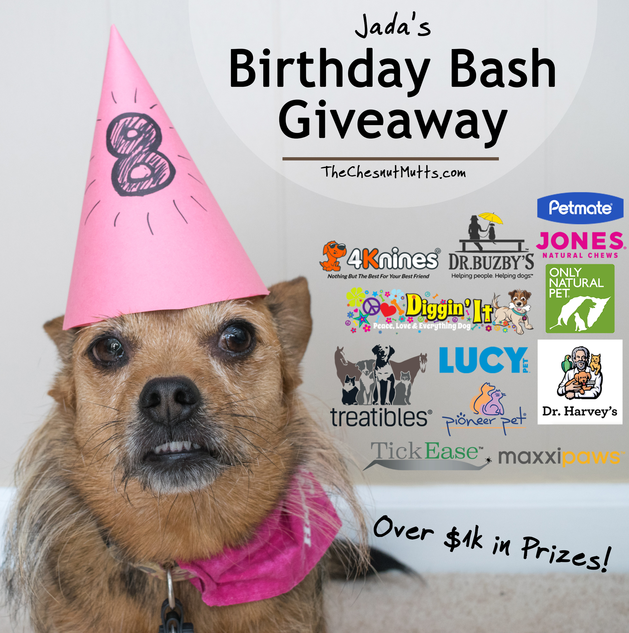 Enter the TheChesnutMutts.com Birthday Bash Dog $1,000 Giveaway for your chance to win over $1,000 in prizes for you and your dog including dog food, treats, supplements, toys, and more!