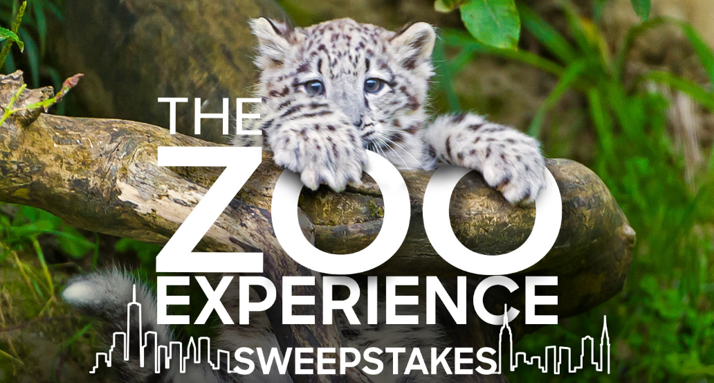 Animal Planet Zoo Experience Sweepstakes (Codes