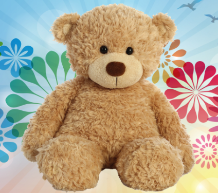 Lysol needs to see what your child's Teddy Bear looks like so they can mend your Teddy Bear and make it brand new!