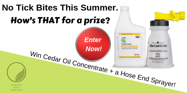 Organic Daily Post is giving away a free supply of PCO Choice Outdoor Insect Control that will last all summer for a normal sized yard.