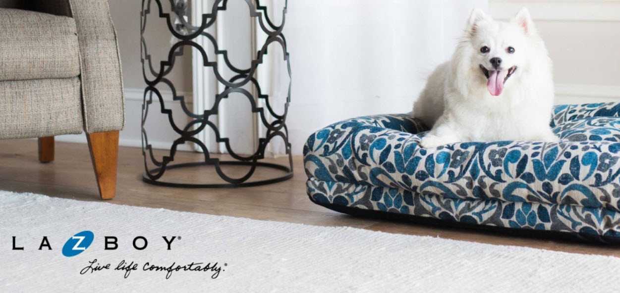 Enter for your chance to win a La-Z-Boy brand pet bed in the La-Z-Boy National Dog Day Sweepstakes