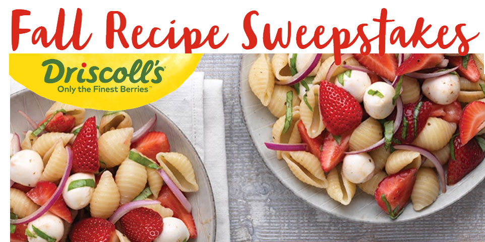 Make, rate, and review for a chance to win a Cuisinart Automatic Cold Brew Coffee Maker, Rover Stainless Steel Lunchbox Kit, and Berries for a year. Looking for the perfect back to school and fall recipes? Driscoll have you covered! Their berry recipes are kid friendly, delicious, and perfect for any fall party.