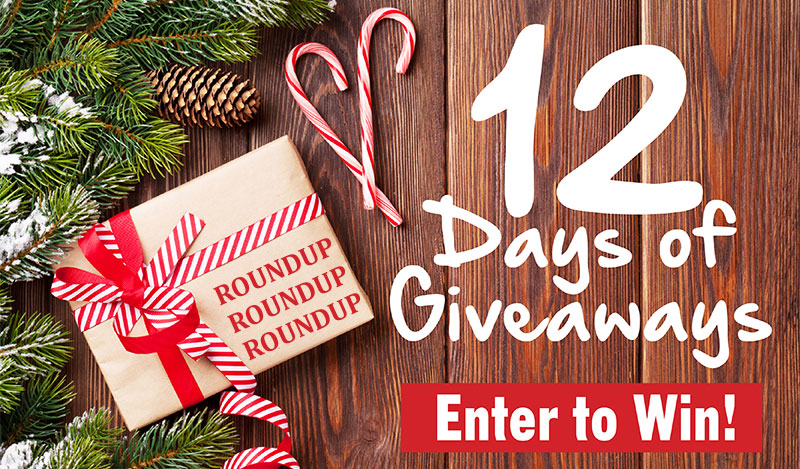 12 Days of Giveaways Roundup - Win the Holidays!