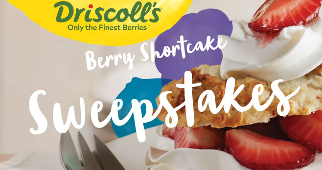 Share your strawberry shortcake creations for your chance to win $50 to $260 in cash from Driscoll's Berries. Enter for your chance to win When you're craving a summery treat, strawberry shortcake is just the ticket. From family picnics to Fourth of Julys, memories of fluffy cake and sun-sweet strawberries dot our childhoods. Try a creative twist on mom's recipe, or whip up a comforting classic. Either way, the kids are sure to come running.