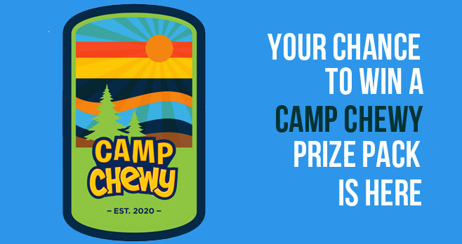 """500 WINNERS! Enter for your chance to win $250 worth of """"Play Money"""" in the form of a gift card and Quaker Camp Chewy gear to create their own fun at home to encourage kids to play on this summer. Five hundred winners will be selected via a random drawing"""