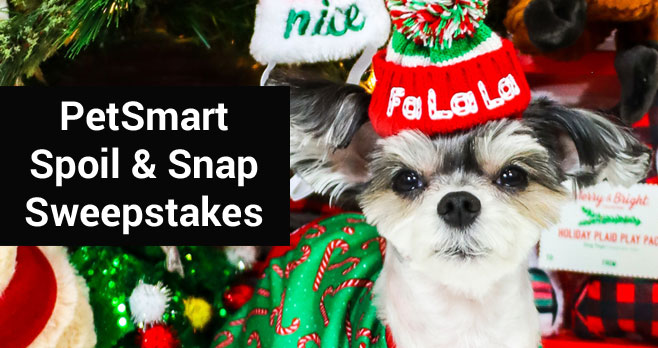 PetSmart Celebrates the Season of Spoiling™ with Virtual Santa Photos and Sweepstakes With more than 10,000 prizes including a $50,000 grand prize, the Spoil & Snap™ Sweeps Will Spoil Pets and Pet Parents Alike