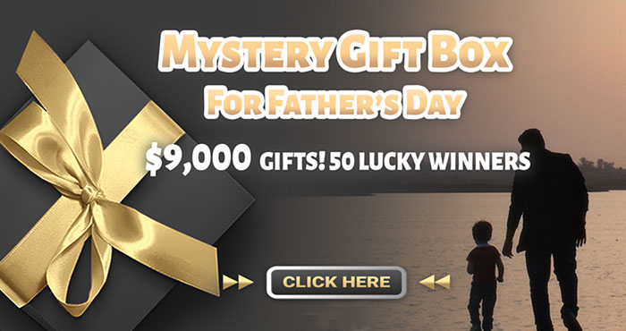 TOPDON Mystery Box for Father's Day Giveaway