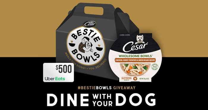 Enter for your chance to win a year's supply of of Cesar Wholesome Bowls plus a $500 Uber Eats Gift Card. Follow @cesarcuisine and post your photo with #BestieBowls #Giveaway or simply upload your photo on the website for a chance to win!