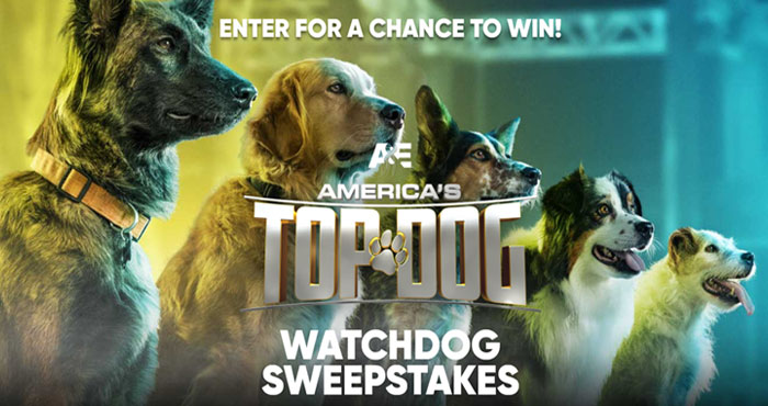 A&E America's Top Dog Watch Dog Sweepstakes
