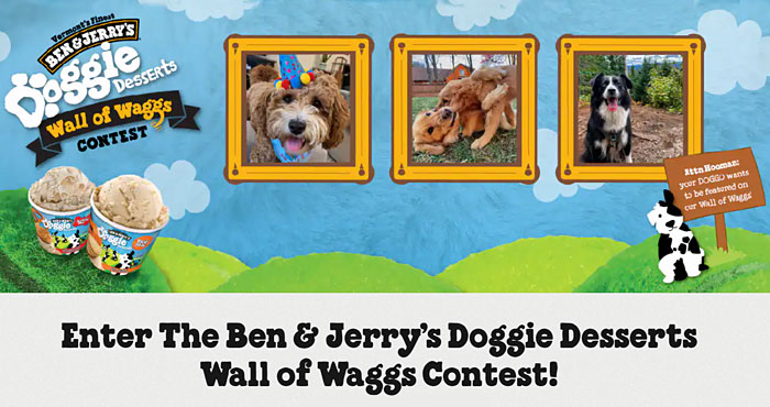 Ben & Jerry is hosting the Wall of Waggs photo and video contest to celebrate their new Doggie Desserts flavors, Rosie's Batch and Pontch's Mix.